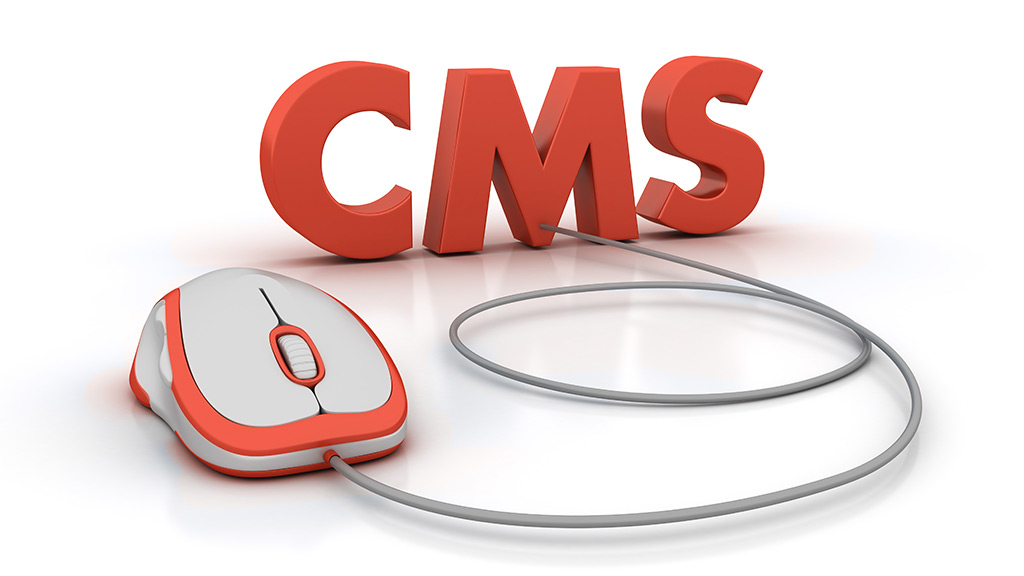 which-cms-will-you-use-to-build-my-site